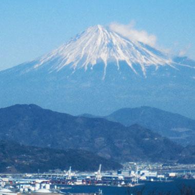 静岡市のおすすめAGAクリニック12院!薄毛・AGA治療法と費用を解説のイメージ